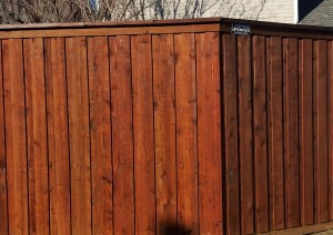 backyard privacy fences wood cedar board on board 8 ft tall overlapping pickets