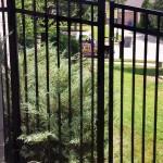 black metal fences