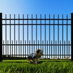 puppy bars for wrought iron fences
