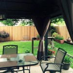 Cedar Privacy Fence Unstained