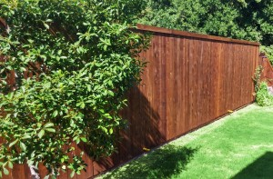 cedar wood fence 6 ft